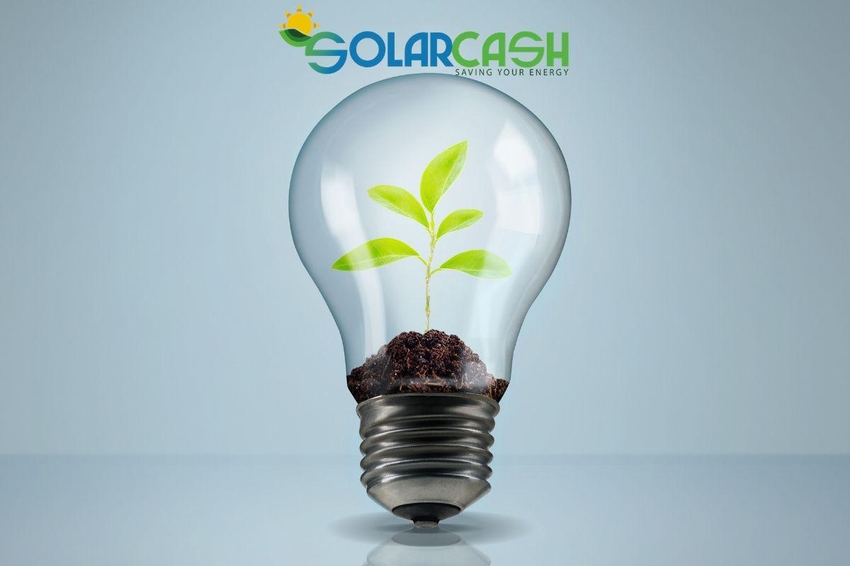 Aziende sempre più green con il fotovoltaico