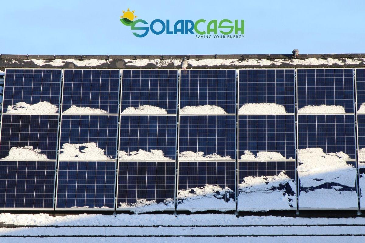 Come scegliere i pannelli solari per le aziende?