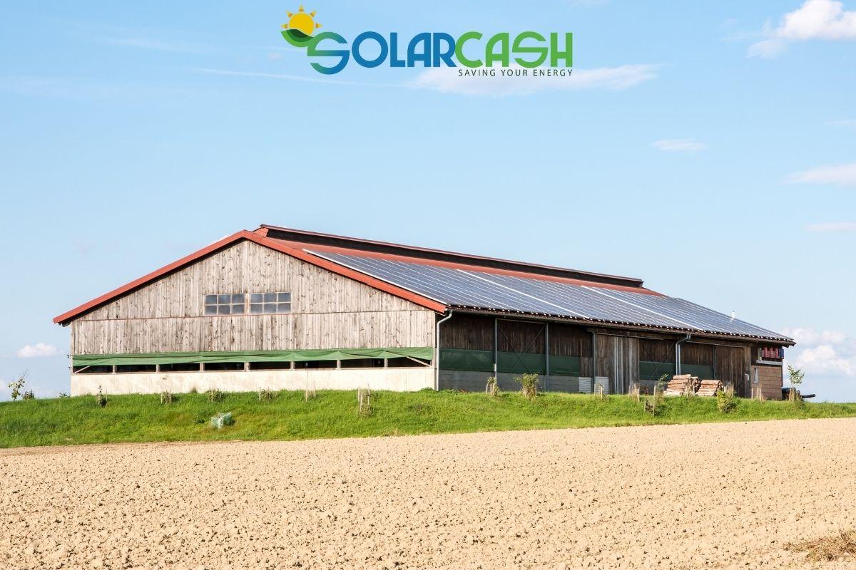 Il connubio tra fotovoltaico e agricoltura